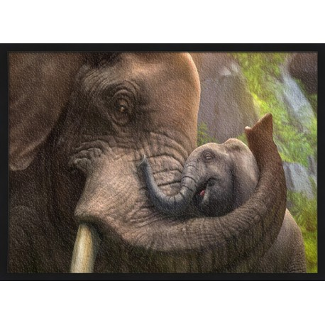 Topný obraz - Sloní objetí