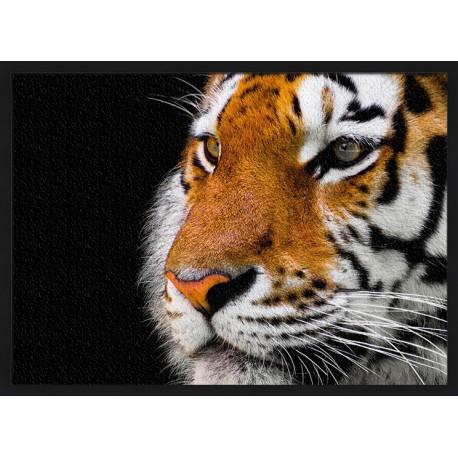 Topný obraz - Tygr ve tmě