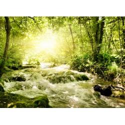 infrapanel - Potok v lese