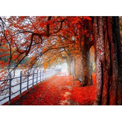 infrapanel - Červený podzim