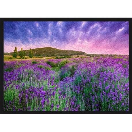 Topný obraz - Provence