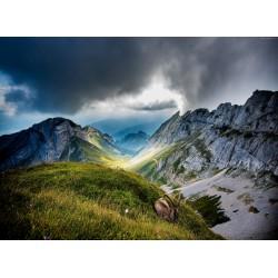 infrapanel - Švýcarské hory