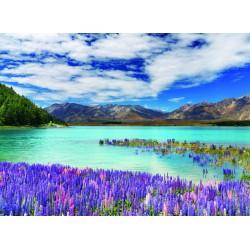 infrapanel - Nový Zéland